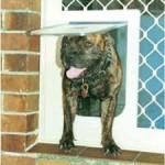 FLYSCREEN and SECURITY DOOR